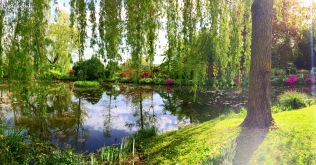 Fondation Claude Monet, Giverny 2/3