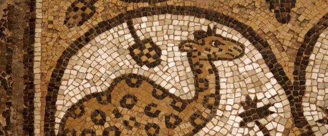 Girafe, mosaïque de l'église Byzantine de Pétra.jpg